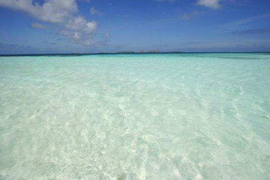 Posada Mediterraneo : LOS ROQUES  LAGOON