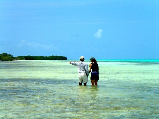 Posada Mediterraneo: FLY FISHING IN THE LOS ROQUES FLATS