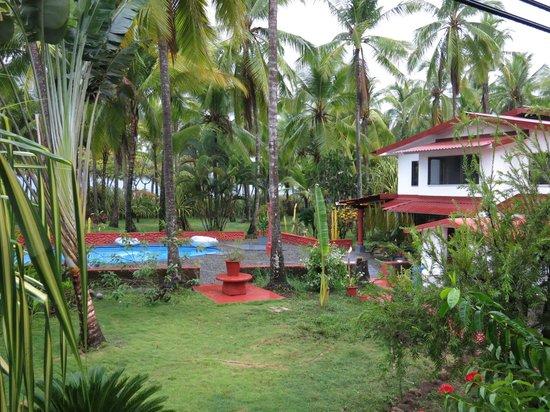 Beso del Viento: vue de la chambre, piscine, cocotiers, et la mer