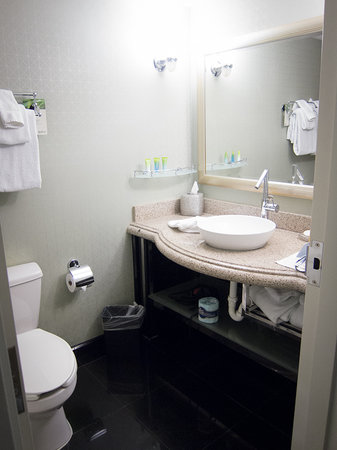 Radisson Hotel Orlando - Lake Buena Vista: Bathroom.