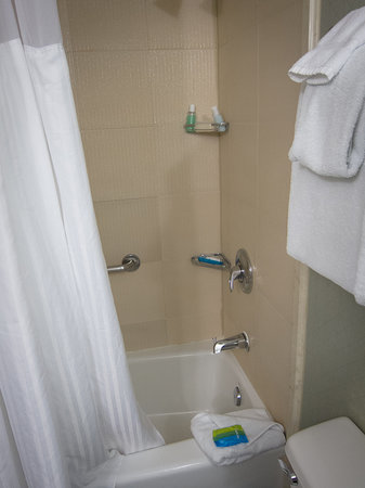Radisson Hotel Orlando - Lake Buena Vista: Shower.