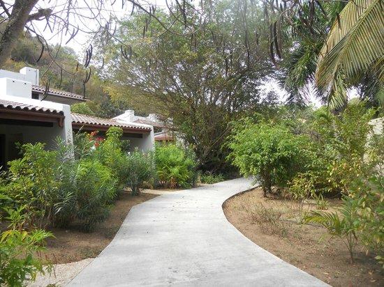 Mango Bay Resort : Grounds