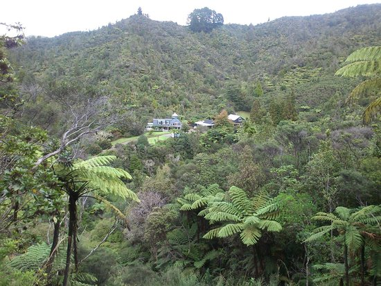 Wairua Lodge - Rainforest River Retreat: Looking over the Lodge from Old Coach Rd