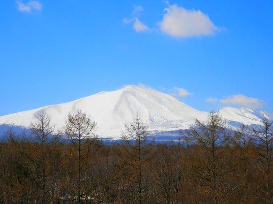 Villa Kitakaruizawa L-Wing: 部屋のベランダから見た浅間山
