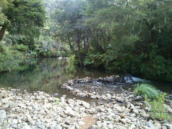 Wairua Lodge - Rainforest River Retreat: Waterhole and hammocks, bean chairs in the bush.