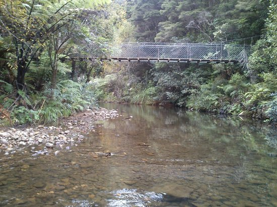 Wairua Lodge - Rainforest River Retreat: View of the bridge over the river from the ford.