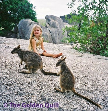 Granite Gorge Nature Park: Feed the wallabies