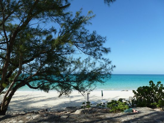 Pigeon Cay Beach Club: Hermosa vista