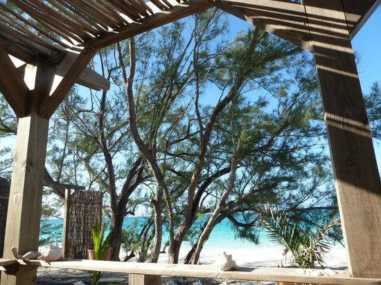 Pigeon Cay Beach Club: La vista