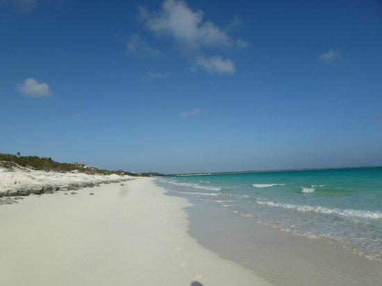 Pigeon Cay Beach Club: La playa