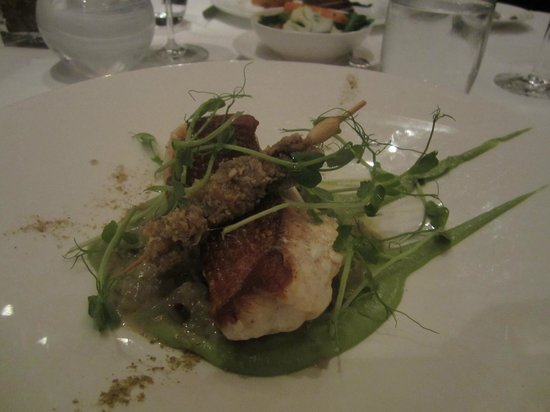 Opus Restaurant: Red Emperor ,Fennel, Mushrooms & Brochette  Oat crusted mussels