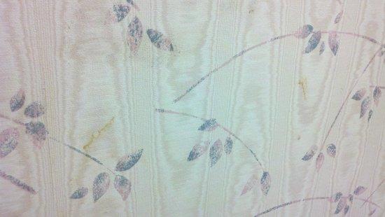 Inn At Grand Glaize : Gunk on bathroom wall