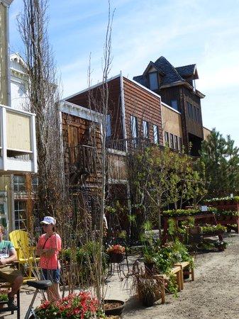 The Saskatoon Berry Farm 사진