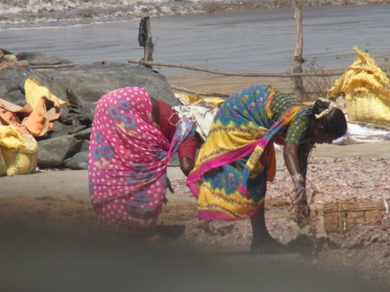 The Retreat Hotel & Convention Centre: Fisherwomen turning the drying fish