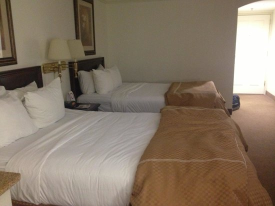 Comfort Suites Airport: Beds