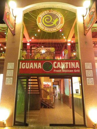 Iguana Cantina