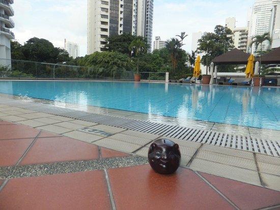 بان باسيفيك أوركارد: Pool Area