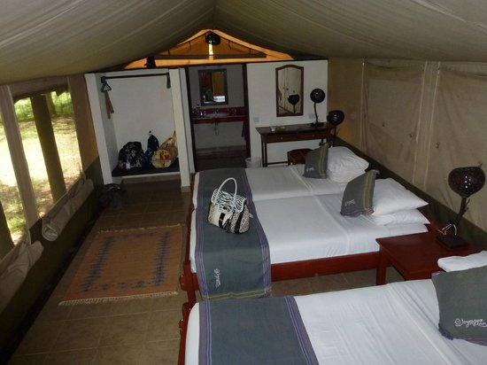 Bruno Safaris - Day Tours: Our Luxury Tent with full toilet and shower, hot running water, just what you need after safari