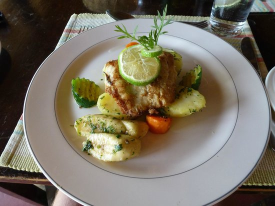 Bruno Safaris - Day Tours: The Food at Ziwani was exquisite, plain food was also produced for the fussy eaters