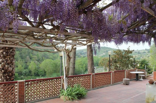 Villa Artemide : Terrasse