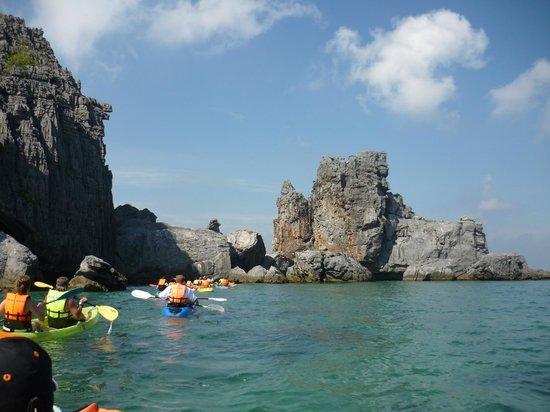 Blue Stars Kayaking : Kayaking