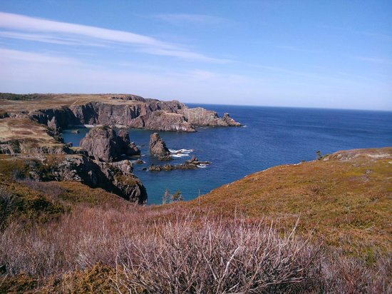 Puffins Landing: Coast