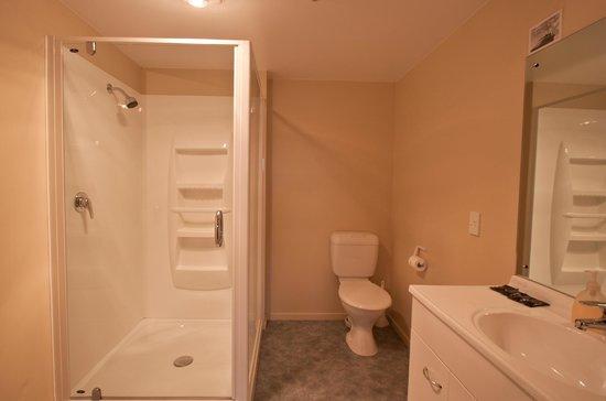Phoenix Motel: Unit 5 Shower/bathroom