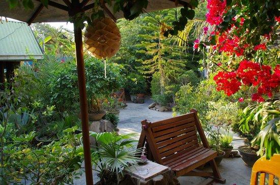 Aquarius Inn: garden oasis