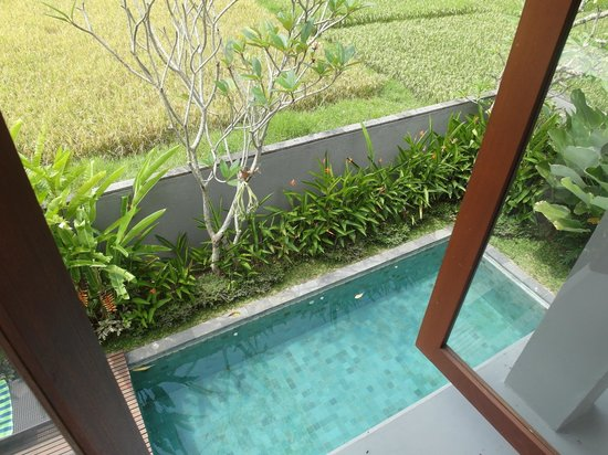 Duana's Homestay: View from the 2nd floor of the villa