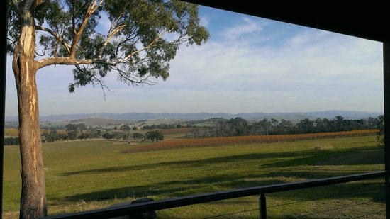 Outlook Hill Vineyard & Cottages: View from the private deck