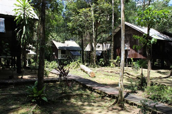 Sukau River Lodge: Phase 3 cottages