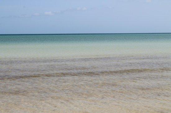 Holbox Hotel Casa las Tortugas - Petit Beach Hotel & Spa: mare
