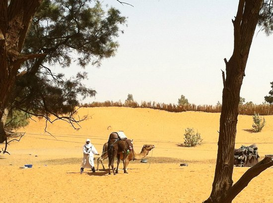Auberge Ksar Sania: Desert is right outside pool and rooms