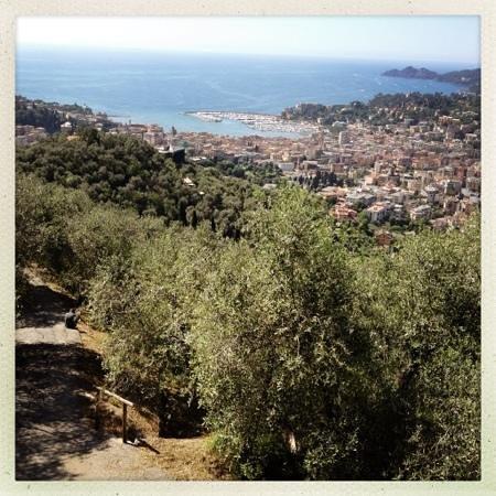 La Bicocca: Panorama
