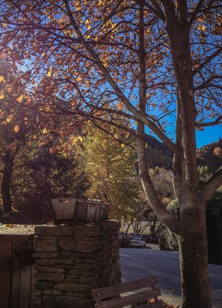 Bonjour: The view of Autumn in Arrowtown, from my seat outside