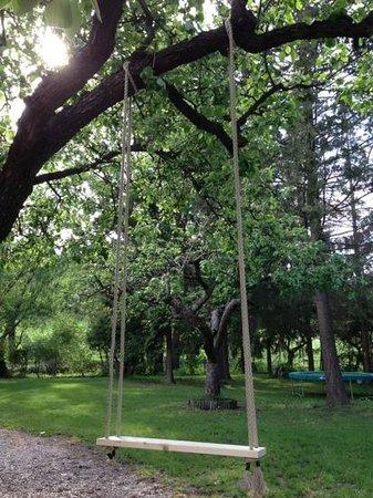 Diofahaz Vendeghaz: swing in the fruittree at Diofahaz garden camping