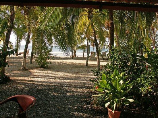 Hotel Las Brisas del Pacifico: La plage depuis l'Hôtel