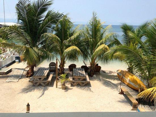 写真Pirate's Bay Inn Dive Resort枚