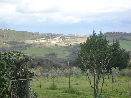 Antico Borgo il Cardino: Vue de notre chambre