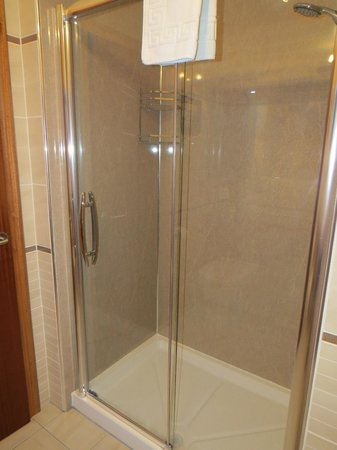 Lynver Guest House: Powerful shower