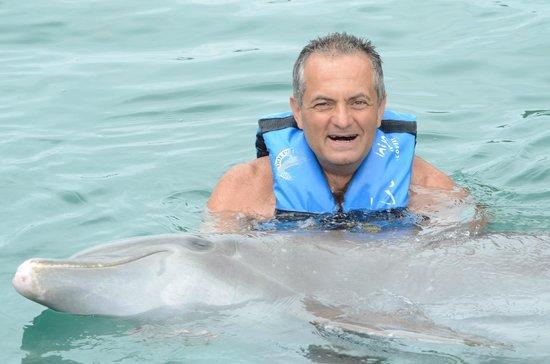 Dolphin Discovery Tortola: IO
