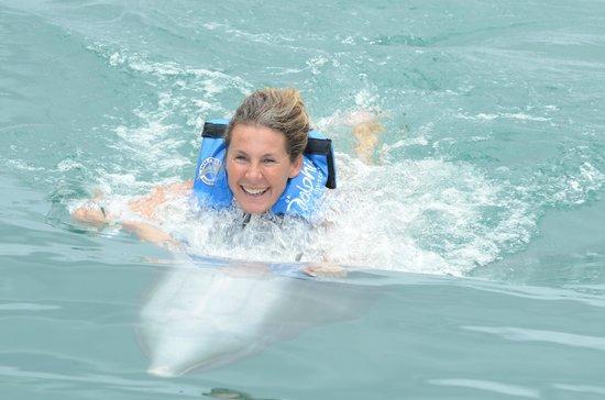 Dolphin Discovery Tortola: Lu