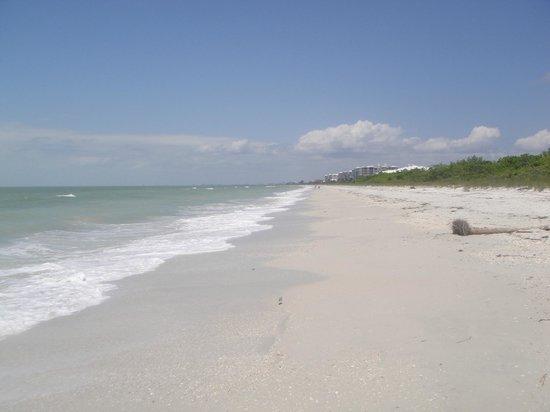 Barefoot Beach Preserve: Wir kommen wieder.....