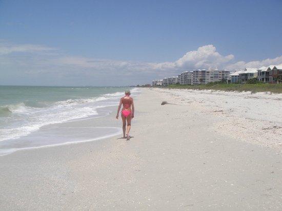 Barefoot Beach Preserve Lange Spaziergänge Am Strand