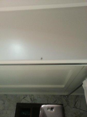 Conference Florentia Hotel: Formiche nello specchio del bagno (2)