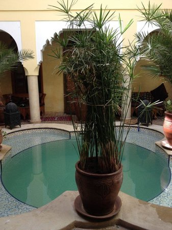 Riad Lena & SPA: The pool- view from my room
