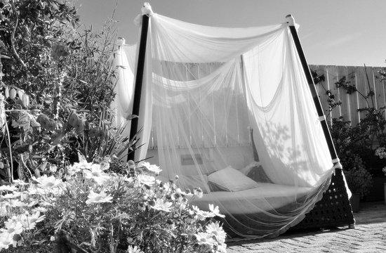 La Princesa y El Guisante Hotel: Lounge