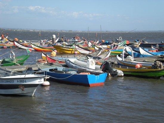 Pousada Ria, Aveiro : Fishing boats