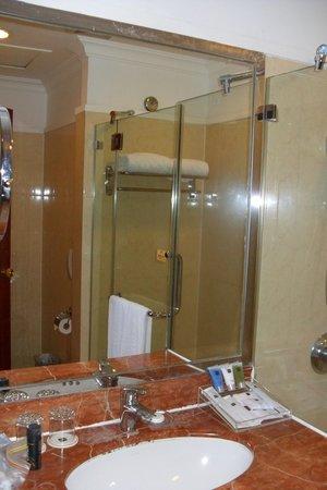 Metropark Hotel Shenzhen: Bathroom basin