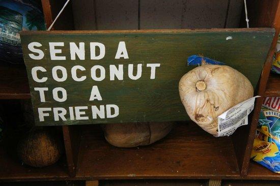 Take Home Maui: send a friend....................